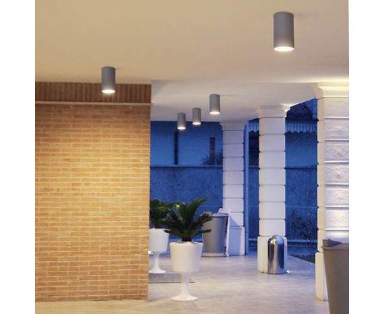 Потолочный светильник Castaldi Lighting DUETTO D20 C/T2, фото 1