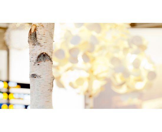 Напольный светильник Green Furniture Concept Leaf Lamp Tree S, фото 3
