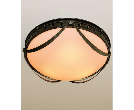 Потолочный светильник Robers DE 2527, фото 1