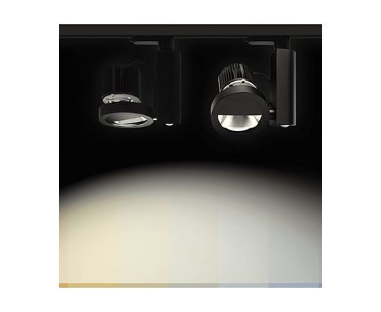 Трековый светильник Forma Lighting Moto-Ringo Wallwasher, фото 3